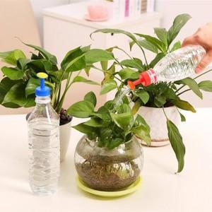 اداة لري النباتات الصغيرة بالرش